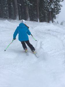 Skiing Alpine Meadows