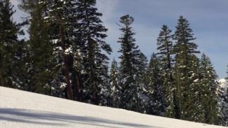 Spring Skiing 2017